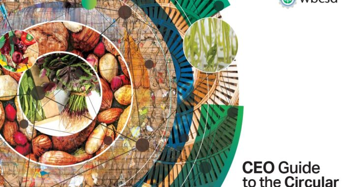 wbcsd - CEO guide to the circular bioeconomy